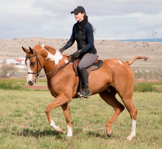 Scheherezade-Arabian-Farms-Doc-Leo-Epic-SSK_5