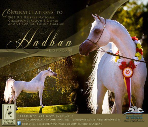 Hadban Al Shaqab